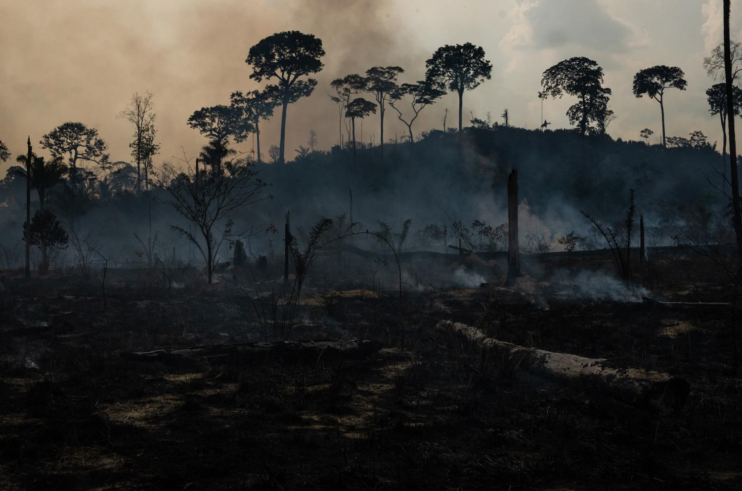 Members of the IBAMA forest fire brigade (named Prevfogo) fight burning in the Amazon area of rural settlement PDS Nova Fronteira, in the city of Novo Progresso, Para state, northern Brazil, onTuesday, Sept. 3, 2019. (Gustavo Basso/NurPhoto/Zuma Press/TNS)  HFA WEB LN NO MAGAZINE SALES * France Rights OUT *