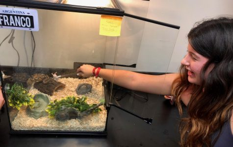 Biology Students Welcome a New Slithering Class Pet