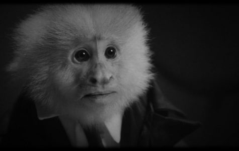 David Lynch and a talking monkey: A Review