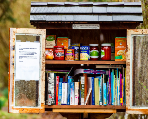 """Little Food Pantry"" on Prospect Avenue in Bethlehem. ""Little Free Library"" wooden street corner kiosks have now become ""Little Food Pantries"" in neighborhoods throughout Lehigh Valley. These offer canned goods and non-perishable food items for people in need."