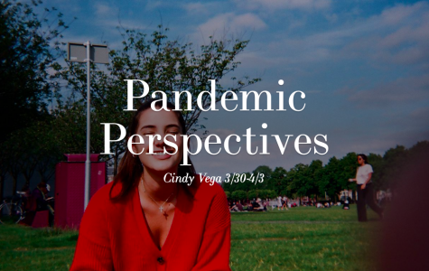 Pandemic Perspectives: Part 1