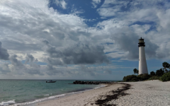 Key Biscayne's Crandon Park Beach is one of many locations on the island facing erosion problems. The new Beach Nourishment project will work to rebuild the beach's withering sand dunes.