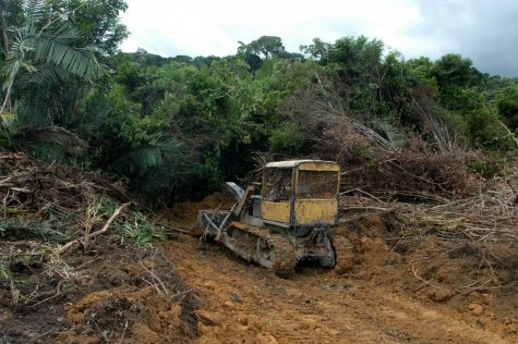 A bulldozer takes down jungle outside SantarŽm, where U.S. agribusiness giant Cargill has opened a $20 million Amazon River terminal. A Knight Ridder reporter and photographer were ordered off this farm by a man who said he did business with Cargill and did not want to discuss deforestation issues.
