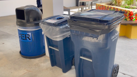 What You May Not Know About Recycling At School
