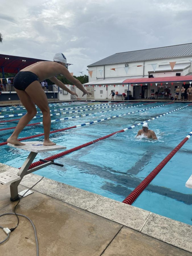Freshman Juanfrancisco Gudino prepares to dive to swim a 50 butterfly in the 200 medley relay. The Raiders emerged with success from their meet against Miami Country Day and Carrollton last Thursday.