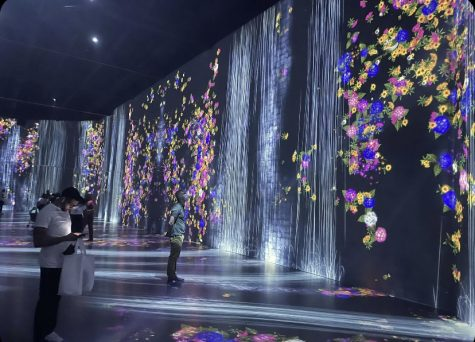 At Superblue Miami, visitors can walk through stunning 3D displays of modern art.