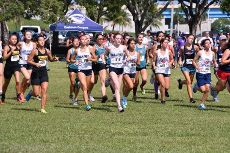 Cross Country Team Reaches Halfway Point